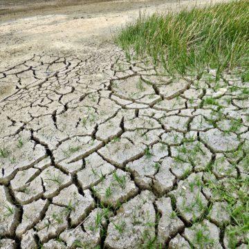 Jak se můžeme bránit suchu?